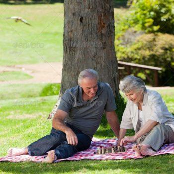 picnic-older